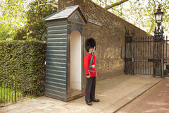 Queens Guard Clarence House Royalty Free Stock Photo