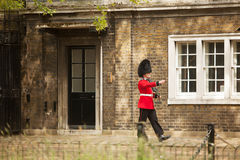 Queens Guard Clarence House Stock Photo