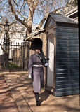 Queens Guard on duty with sentry box Royalty Free Stock Images