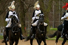 Queens guard riding Royalty Free Stock Image