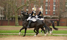 Queens guard riding Stock Image