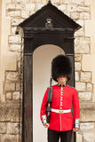 Queens Guards London Royalty Free Stock Image