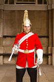Queens Guardsman Royalty Free Stock Images