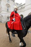 Queens Horse Guard Stock Image