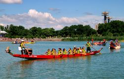 Queens, NY: Dragon Boat Team Racers stock afbeelding