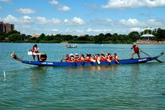 Queens, NY: Dragon Boat Team Racers stock foto