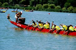 Queens, NY: Dragon Boat Team Racers Stock Photos
