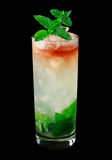Queens Park Swizzle cocktail on black background. Queens Park Swizzle is a classic cocktail from the 1920s that contains rum, lime juice, mint, simple syrup Royalty Free Stock Images