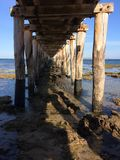 queenscliff Royalty Free Stock Photography