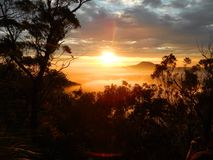 Queensland Στοκ Φωτογραφίες