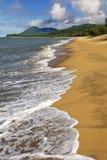 Queensland beach Stock Photography
