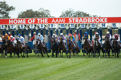 Queensland Derby. Start of the Queensland Derby Horse Race during the Aami Stradbroke Races, Eagle Farm, Brisbane, QLD, Australia, 11 June 2011 Royalty Free Stock Photography