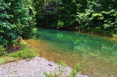 Queensland norte tropical Fotos de Stock Royalty Free