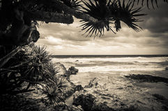 Queensland plaża obraz royalty free