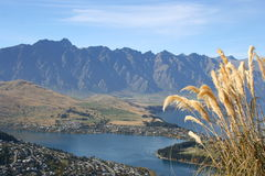 Queenstown from above, New Zealand. Queenstown on the river bank stock images
