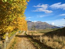 Queenstown Cycle Trail in Autumn Arrowtown royalty free stock photos