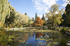 The Queenstown Gardens. The landscapes of Queenstown Gardens of New Zealand Royalty Free Stock Photo