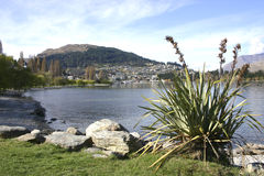 Queenstown New Zealand Stock Photos