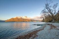 Queenstown in New Zealand. Stock Images