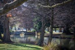 Queenstown, Nova Zelândia Fotografia de Stock