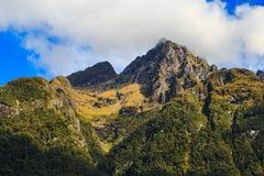 Queenstown nyazeeländskt Milford Sound landskap Fotografering för Bildbyråer