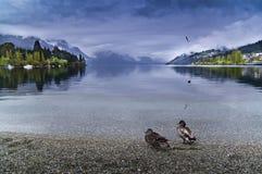 Queenstown NZ Nouvelle Zélande Images stock