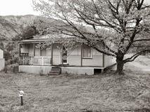Queenstown Tasmanien lizenzfreie stockfotos