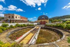 Queenstown Tasmanien: Järnvägsstation fotografering för bildbyråer