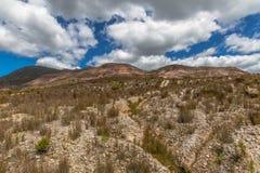 Queenstown Tasmanien: mån- landskap royaltyfria bilder