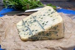 Queijo azul feito do leite de vaca com molde de Penicillinum, sof saboroso foto de stock