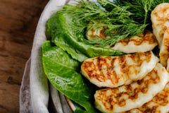 Queijo caseiro grelhado do halumi com as ervas verdes frescas Fotos de Stock Royalty Free