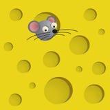 Queijo com rato Fotos de Stock