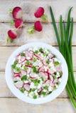 Queijo de casa de campo com radish Imagem de Stock