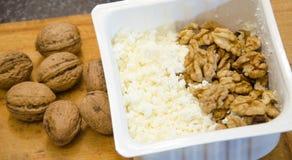 Queijo de coalho saboroso e alimento saudável nuts Imagens de Stock