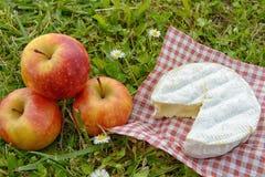 Queijo do camembert com as maçãs na grama Imagem de Stock
