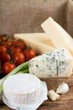 Queijo do camembert na frente do azul dinamarquês e do eidam Fotos de Stock