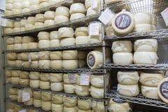 Queijo do leite de vaca, armazenado no prateleiras de madeira e deixado para amadurecer a Imagens de Stock Royalty Free