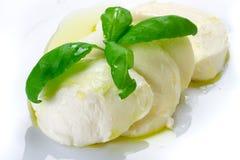 Queijo do Mozzarella com manjericão e petróleo verde-oliva Fotos de Stock Royalty Free