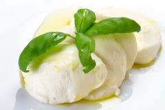 Queijo do Mozzarella com petróleo verde-oliva Fotografia de Stock Royalty Free