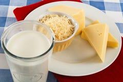 Queijo e leite fotografia de stock