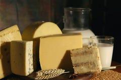 Queijo e leite Fotos de Stock