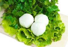 Queijo e salada Imagens de Stock Royalty Free