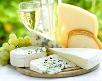 Queijo e vinho Fotos de Stock Royalty Free