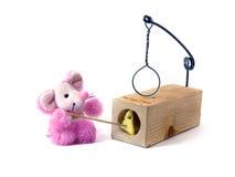 Queijo em um mousetrap Fotos de Stock