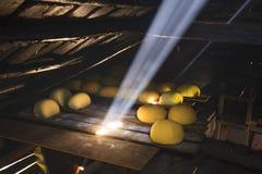 Queijo em uma tabela de madeira no sol Alimento biológico Foto de Stock Royalty Free