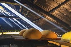 Queijo em uma tabela de madeira no sol Alimento biológico Fotos de Stock Royalty Free