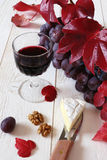 Queijo francês Coulommiers, wineglasse, uvas vermelhas e pasto do outono Foto de Stock Royalty Free