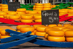 Queijo holandês Fotos de Stock Royalty Free