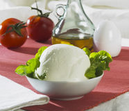 Queijo italiano do mozzarella Imagem de Stock Royalty Free