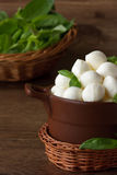 Queijo italiano do mozzarella. Fotografia de Stock